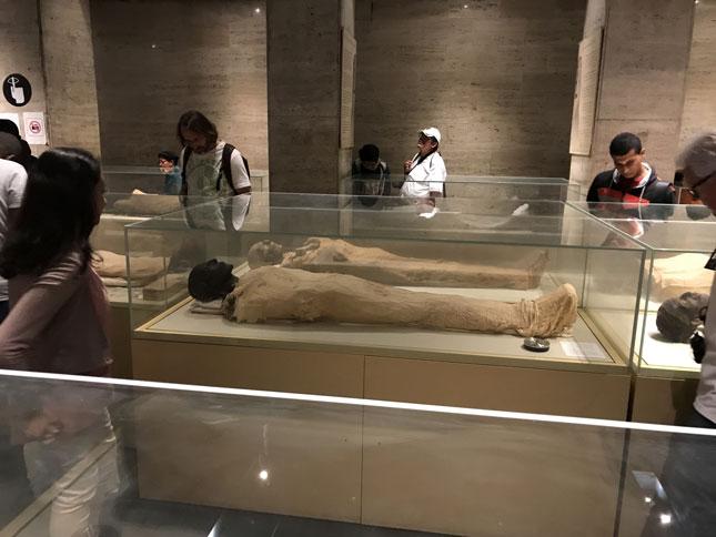 museo-egipcio-momias-reales