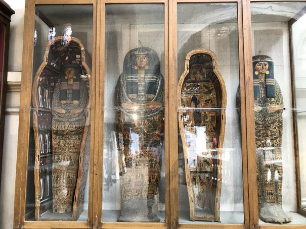 museo-egipcio-sarcofagos-vitrinas