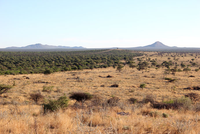 reserva-otjiwa-namibia-vistas