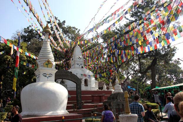 katmandu-templo-monos