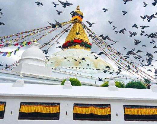 katmandu-visita-estupa-buddhanath