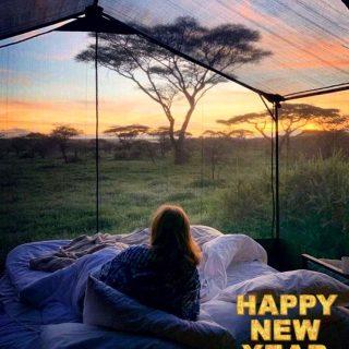 Con la esperanza de despertarnos pronto en lugares como el de la foto, despedimos este año 2020 como si hubiera sido un mal sueño.  Os deseo lo mejor para este 2021; salud, amor, un poco de dinerito y muchos viajes! . #happynewyear #felizañonuevo #bye2020 #adios2020 #hi2021 #hola2021 #love #lovetravel #misstraveling #africa #sunset #serengeti #gorongeti. . Foto: @tanzaniadestination