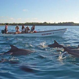 """En Zanzibar tuve una de las experiencias más """"salvajes"""" que recuerdo, cuando hicimos la excursión para ver delfines en Kizimkazi. Estuvimos un par de horitas navegando por aquel precioso mar Índico, de intenso color azul verdoso, un poco intimidante para mi ya que el fondo marino de este archipiélago es de los más ricos del mundo y ¡hay de todo!. Cuando al fin avistamos a un grupo de delfines, el barquero nos dijo, ¡tiráros al mar! y nosotros, ni cortos ni perezosos, saltamos de la barca con unas gafas de bucear, para intentar ver mejor a los delfines. Obviamente estos siguieron su curso y pasaron de nosotros, pero pudimos ver más de cerca como se movían por debajo del mar... fue increible y un poco inconsciente, la verdad...  En el linktree de nuestro perfil puedes ver la guía de Zanzibar que tenemos en nuestra web.  #zanzibar #zanzibarbeach #zanzibartravel #zanzibarviajesyturismo #playasdezanzibar #zanzibarexcursions #stonetown #stonetowntravel #tanzaniasafari #viajestanzania #viajesatanzania #viajaratanzania #safaristanzania #safarisentanzania #gorongeti"""